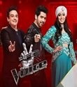 The Voice Episode 22